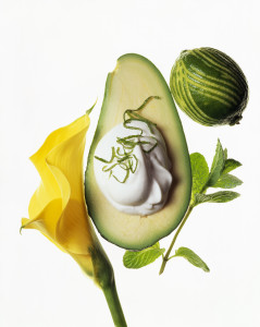 avocado_lilly