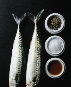 mackerel_pots